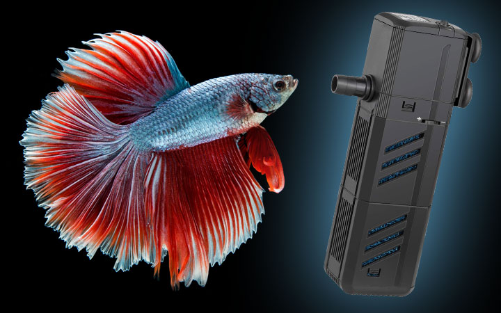 Best Small Aquarium Filter for Betta Fish
